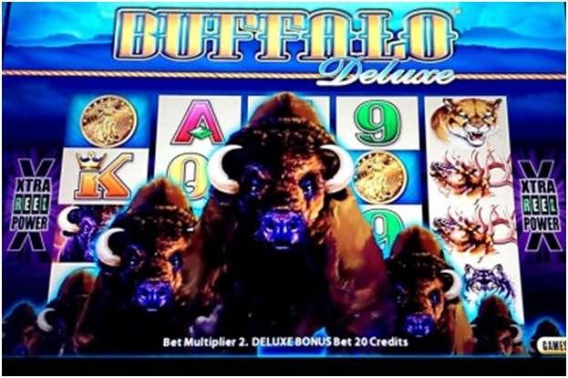 Buffalo Deluxe pokies